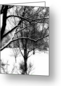 Tree-covered Greeting Cards - Winter Greeting Card by Simone Hester