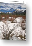 Dogwood Lake Greeting Cards - Winter Spice Greeting Card by Royce Howland