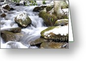Williams Greeting Cards - Winter Stream Greeting Card by Thomas R Fletcher