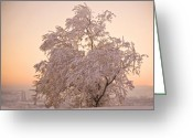 Peachy Greeting Cards - Winter Sunset Greeting Card by Marilyn Hunt