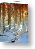 Monts Dore Greeting Cards - Winter Sunset Greeting Card by Rod Jones