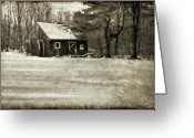 Backyard Greeting Cards - Winter Textures Greeting Card by Evelina Kremsdorf
