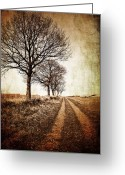 Sepia Greeting Cards - Winter Track With Trees Greeting Card by Meirion Matthias