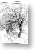 Snow Storm Greeting Cards - Winter Tree in Field of Snow Sketch Greeting Card by Randy Steele