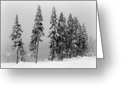 Snow Scenes Greeting Cards - Winter Trees on Mount Washington Greeting Card by Marilyn Wilson