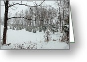 Snow Scenes Greeting Cards - Winter Wonderland Greeting Card by Aimee L Maher