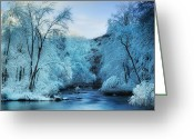 Snow Scenes Greeting Cards - Winter Wonderland Greeting Card by Thomas Schoeller