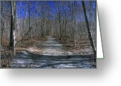 Winter Trees Greeting Cards - Winter Woods  Greeting Card by Wildwood  Artistry