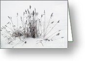 Spreads Greeting Cards - Winterland 5 Greeting Card by Jon Blumenaus