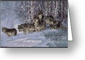 Wolves Mixed Media Greeting Cards - Winters Lace Greeting Card by J McCombie
