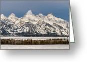 Grand Teton Panoramic Greeting Cards - Winters Majesty Greeting Card by Sandra Bronstein