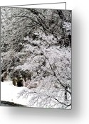 Clump Greeting Cards - Winters Reminder Greeting Card by Scott  Wyatt