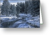 Geothermal Greeting Cards - Winters Splendor Greeting Card by Sandra Bronstein