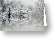 Winter Trees Greeting Cards - Winters tale Greeting Card by Sharon Lisa Clarke