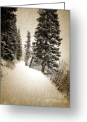 Winter Photos Greeting Cards - Winters Walk Greeting Card by Andrea Hazel Ihlefeld
