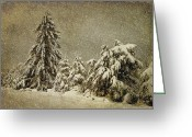 Winter Trees Greeting Cards - Winters Wrath Greeting Card by Lois Bryan