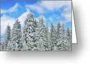 Solitude Greeting Cards - Winterscape Greeting Card by Jeff Kolker