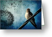 Photo Manipulation Greeting Cards - Wishing Swallow Greeting Card by Nancy  Coelho