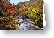 Autumnal Digital Art Greeting Cards - Wissahickon Creek in Fall Greeting Card by Bill Cannon