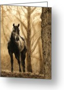 Equines Painting Greeting Cards - Within the Woods Greeting Card by Simona Tarakeviciute