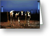 Full Moons Greeting Cards - Witness . The Arrival Greeting Card by Wingsdomain Art and Photography