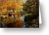 Fall River Scenes Greeting Cards - Wolcott Mill  Park River Reflections Greeting Card by LeeAnn McLaneGoetz McLaneGoetzStudioLLCcom