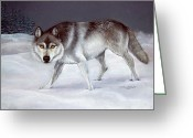 Nocturnal Animal Print Greeting Cards - Wolf Greeting Card by LaReine McIlrath