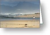 Runner Greeting Cards - Woman running in the morning by Flamingo lake estuary Greeting Card by Sami Sarkis