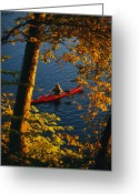 River Scenes Greeting Cards - Woman Seakayaking On The Potomac River Greeting Card by Skip Brown