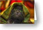 Blue Cat Greeting Cards - Wonder Greeting Card by Joann Vitali