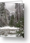 Yosemite Creek Greeting Cards - Wonderland Yosemite Greeting Card by Heidi Smith