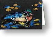 Black Bird Greeting Cards - Wood Duck and Fall Leaves Greeting Card by Carol Sweetwood