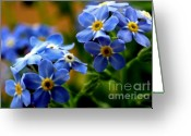 Iridescent Greeting Cards - Wood Forget Me Not Blue Bunch Greeting Card by Ryan Kelly