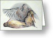 Game Drawings Greeting Cards - Woodcock Greeting Card by Betsy Gray