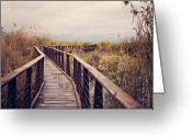 Israel Greeting Cards - Wooden Path On The Lake Greeting Card by Copyright Anna Nemoy(Xaomena)