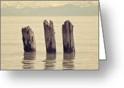 Mooring Greeting Cards - Wooden Piles Greeting Card by Joana Kruse