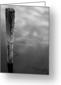 Barbed Wire Greeting Cards - Wooden Post With Barbed Wire Greeting Card by Peter Levi