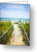 Beach Scenery Greeting Cards - Wooden walkway over dunes at beach Greeting Card by Elena Elisseeva