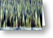 Forested Greeting Cards - Woodland Abstract Greeting Card by The Forests Edge Photography