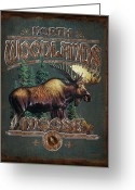 Alaska Greeting Cards - Woodlands Moose Greeting Card by JQ Licensing