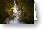 Dark Moss Green Photo Greeting Cards - Woods Greeting Card by Svetlana Sewell