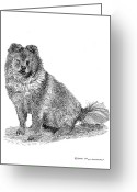 Dog Prints Drawings Greeting Cards - Woofy Greeting Card by Jack Pumphrey