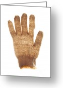 Backlight Greeting Cards - Woolen glove Greeting Card by Bernard Jaubert