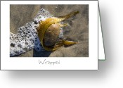 Beach Art Greeting Cards - Wrapped Greeting Card by Peter Tellone