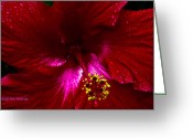 Water Bloom Greeting Cards - Wrinkle Moisturizer Greeting Card by DigiArt Diaries by Vicky Browning