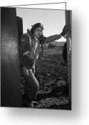 Tuskegee Greeting Cards - Wwii: Tuskegee Airman, 1945 Greeting Card by Granger