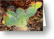 Randall Templeton Greeting Cards - Wyoming cactus Greeting Card by Randall Templeton