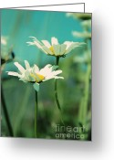 "\""blue Flowers\\\"" Greeting Cards - Xposed - s07b Greeting Card by Variance Collections"