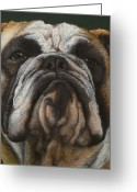 Photorealism Pastels Greeting Cards - Ya wanna piece a me Greeting Card by Norm Holmberg