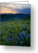 Butte Greeting Cards - Yakima River Canyon Sunset Greeting Card by Mike  Dawson